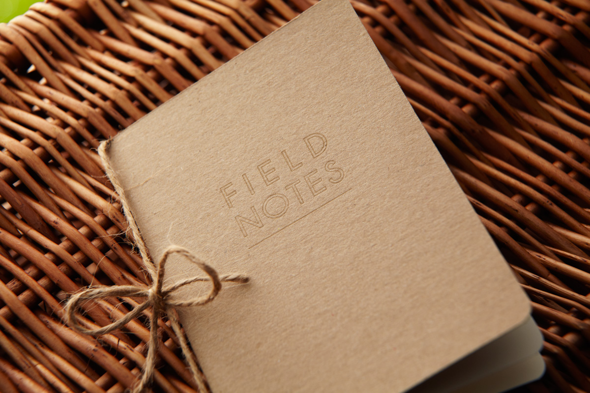 Field Notes, The Particulars